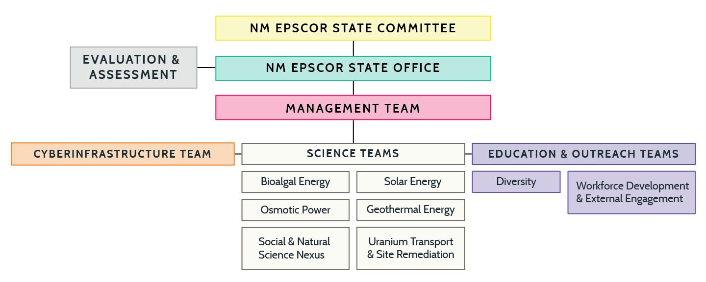 NMEPSCoR Structure